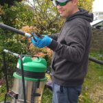 Gutter Cleaning Poole